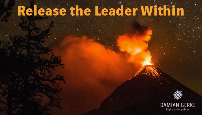 Release the Leader Within, and become the leader you were destined to be